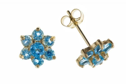 9 Carat Yellow Gold Blue Topaz Stud Earrings AP0227